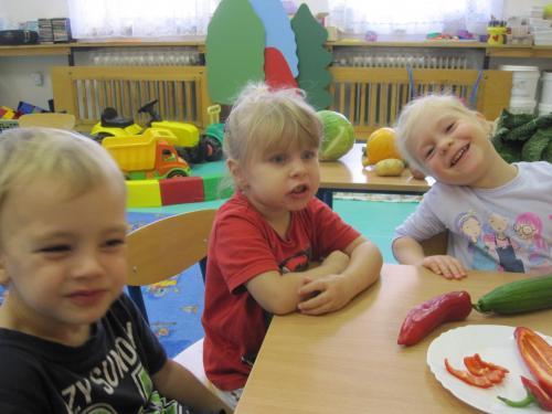 Zeleninový košík – třída Sluníčka