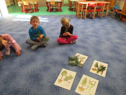 Putování za Lesním skřítkem – třída Včelky